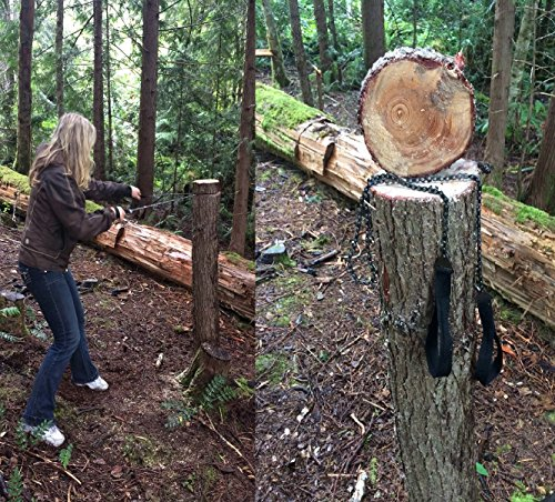 Sportsman pocket chainsaw inches long with free fire