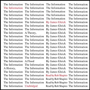 The Information: A History, a Theory, a Flood Audiobook