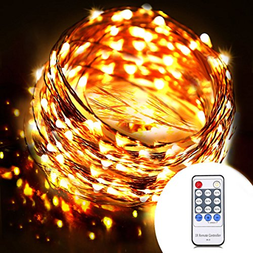OrgMemory Dimmable LED String Lights, (40 Ft, 120 Leds, Warm White, UL Certified Power Adapter ...