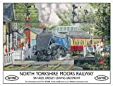 North Yorkshire Moors Railway metal sign (og 4030)