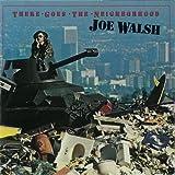 [80's洋楽グラフィティNo.42]【ゼア・ゴーズ・ザ・ネイバーフッド】ジョー・ウォルシュ