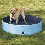 Guardian Gear Splash About Dog Pool, Large, Sky Blue