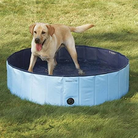 The Best Hard Plastic Wading Pools For Kids Top Kids Gear