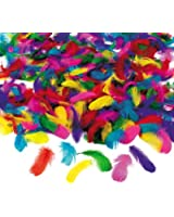 Feather Assortment - 600 Pieces