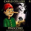 Pinocchio Hörbuch von Carlo Collodi Gesprochen von: Bettina Reifschneider