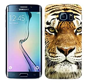 WOW Printed Designer Mobile Case Back Cover For Samsung Galaxy S6 Edge