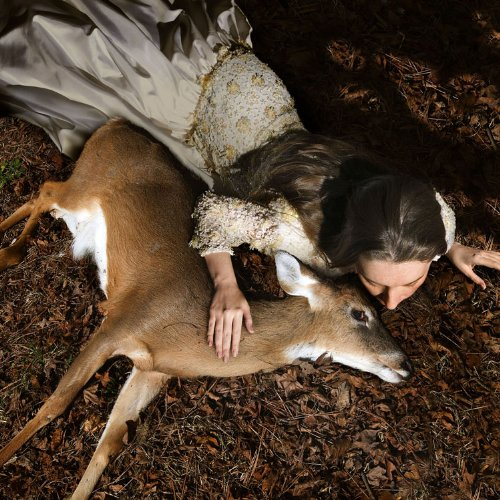 28x28-in-tom-chambers-ashly-with-deer