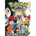 Pokémon Schwarz und Weiss: Bd. 4