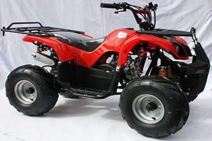 Quad Warrior 125cc 125cc 4 Stroke Quad w/ Reverse