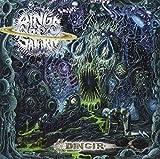 Dingir by Rings of Saturn (2013-02-05)