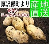 【52%OFF】 訳ありメークイン10kg【北海道産・随時発送中】じゃがいも ジャガイモ