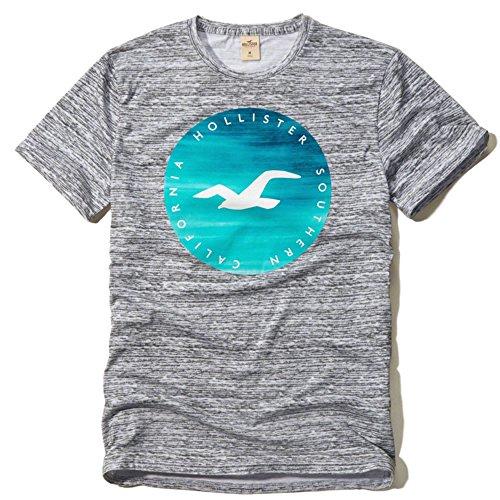 (ホリスター)Hollister メンズ Tシャツ ( 半袖 ) TEXTURED LOGO GRAPHIC TEE [並行輸入品]