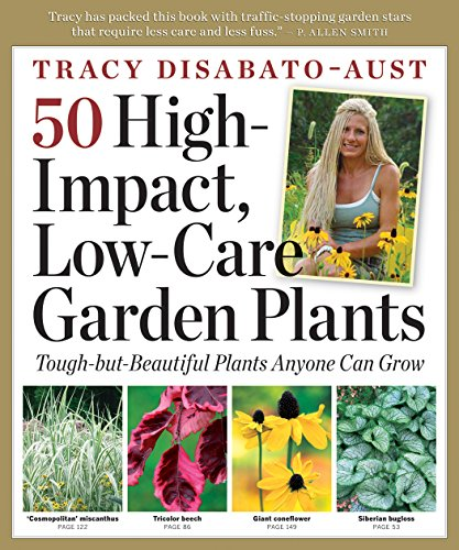 50-high-impact-low-care-garden-plants