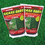 2 X Canada Green Grass Seed, 500 Grams