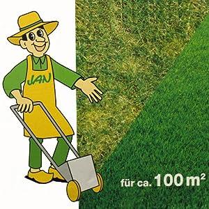 Rasendünger mit Eisen 100 qm - 3 Kg