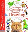 Complete Book of Drawing (Art Ideas) (Usborne Art Ideas)