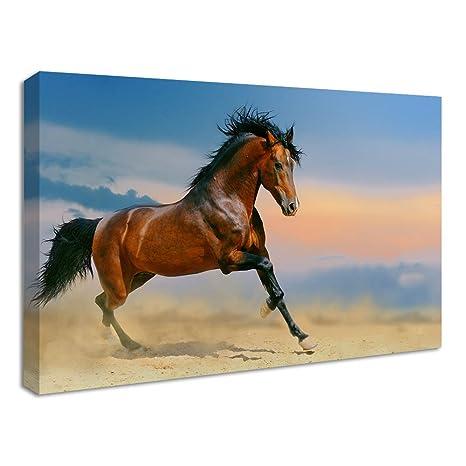 cheval brun tableau impression impression sur toile 61x41cm cuisine maison z470. Black Bedroom Furniture Sets. Home Design Ideas
