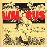 Walrus by WALRUS (2008-09-16)