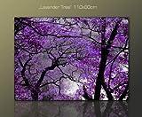 **110x80cm Quadri su tela modello (lavender tree 110x80cm) Fotografia formato XXL – Stampa su tela  – Quadro x poltrone salotto cucina bagno mobili ufficio casa I quadri sono montati su telai di vero legno.