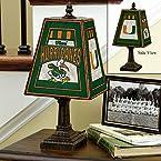 Art Glass Lamp - Miami of Florida