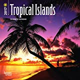 Tropical Islands 2017 Mini 7x7 (Multilingual Edition)