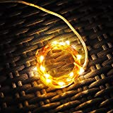LIDORE® Micro 20 LED copper string lights. Best ambiance lighting for outdoor and indoor party decoration. Set of 20 LED lights. Warm white. 3AA Battery operated. 10.96 Feet Long. Ultra thin copper wire