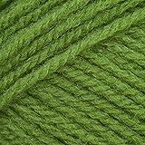100g Robin DK / Double Knit Apple 016 100% Acrylic Knitting Yarn / Wool