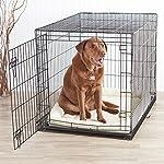 AmazonBasics Single-Door Folding Metal Dog Crate - Large (42x28x30 Inches) from AmazonBasics