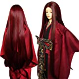 9-10 Inch BJD SD Doll Wig 1/3 bjd Doll Wig Heat Resistant Fiber Long Straight Claret with Halves Hair Wigs Doll Hair SD BJD Doll Wig (Color: 118Z&110, Tamaño: 1/3)