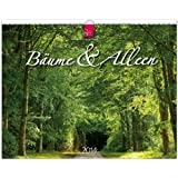 Bäume & Alleen 2014: Original Stürtz-Kalender - Großformat-Kalender 60 x 48 cm [Spiralbindung]