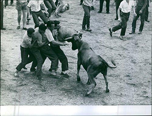 Vintage-Photo-de-quatre-hommes-dans-un-Bull-Fight-lors-dun-festival-de-Bayonne