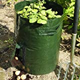 Pack of 2 Potato Grow Bagsby Coopers of Stortford