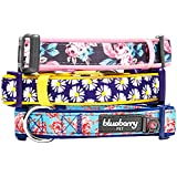 """Blueberry Pet Collars 5/8"""" S Summer Welcoming Rose Flower Prints Girly Adjustable Padded Dog Collar for Small Dogs, Matching Harness Available Separately"""