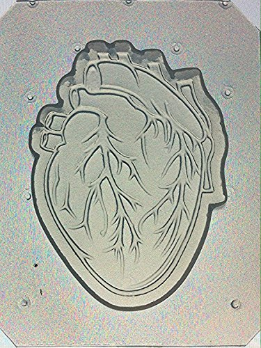 Flexible Resin or Chocolate Mold Anatomical Heart (Resin Molds Heart compare prices)