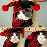 OSPet Funny Pet Hooded Clown Costume for Small Dogs & Cats Halloween Party Cosplay