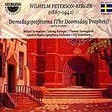 echange, troc  - Peterson-Berger : Domedagsprofeterna (opra)