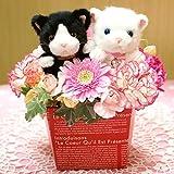 【母の日】白猫&ハチワレ黒猫マスコット付き ミルクBOXフラワーアレンジメント(生花) FL-MD-777