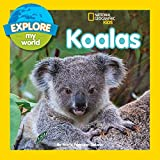 Jill Esbaum Explore My World Koalas