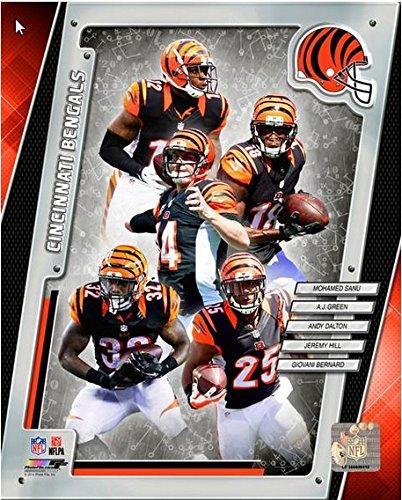 Cincinnati Bengals 2014 Nfl Team Composite Photo 16X20