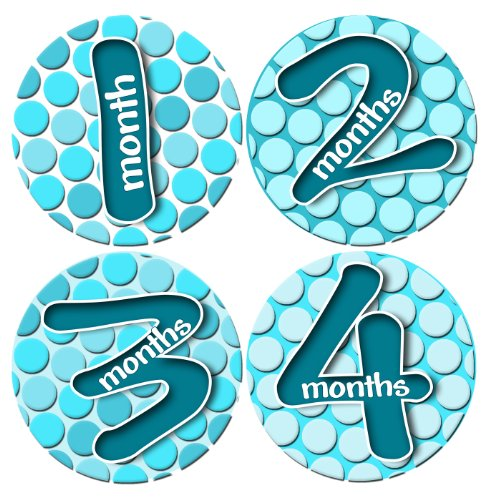 ICY TEAL BLUE BUBBLES Baby Month By Month Stickers - Baby Month Onesie Stickers Baby Shower Gift Photo Shower Stickers