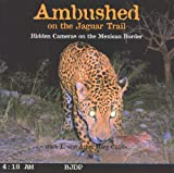 img - for Ambushed on the Jaguar Trail book / textbook / text book