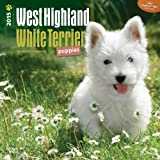 BT West Highland White Terrier Puppies 2015 Wall