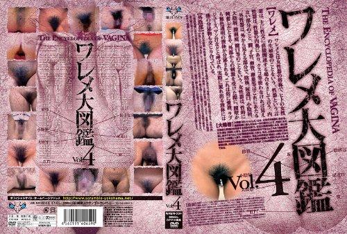 [素人の皆様] ワレメ大図鑑 Vol.4 WREM-004