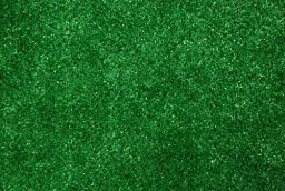 Indoor/Outdoor Green Artificial Grass Turf Area Rug 6\'x8\'