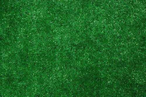 Indoor/Outdoor Green Artificial Grass Turf Area Rug 6'x8'