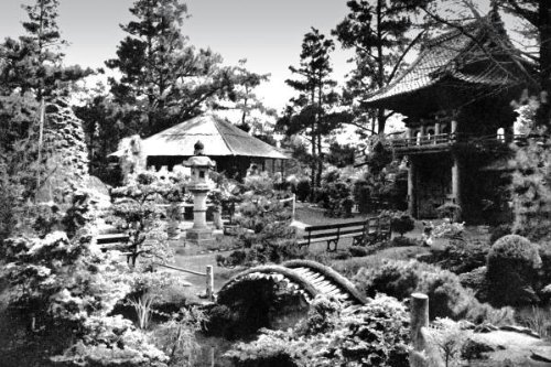 Oriental Tea Garden, San Francisco, Ca By: Vintage San Francisco 31.48 X 46 Art Print Poster