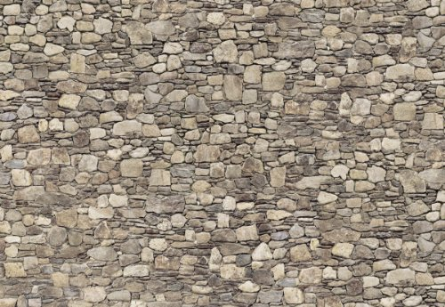 Platin Art Wall Mural Deco Wall, Stone Wall, 8-Feet 4-Inch by 12-Feet (Stone Wall Panels compare prices)