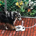Dog Pet Water Fountain API Doggie Fountain by Jensen Pet Products
