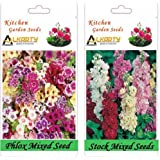 Alkarty Phlox Mixed And Stock Mixed Seeds Pack Of 20 (Winter)