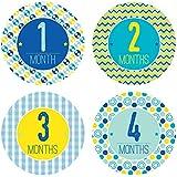 Baby Monthly Stickers - Milestone Onesie Stickers - 1-12 Months - Baby Boy Pattern Monthly Stickers - Pinkie Penguin